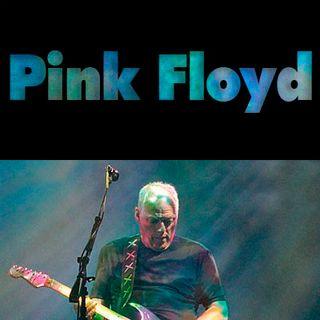 La voz y guitarra de Pink Floyd - 06