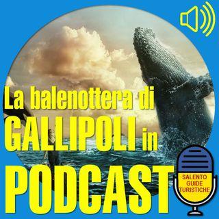 La Balena di Gallipoli
