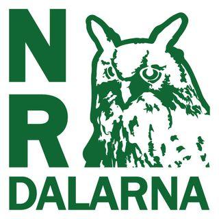 NR Dalarna #26: Höstmörkret spelas bort med musik