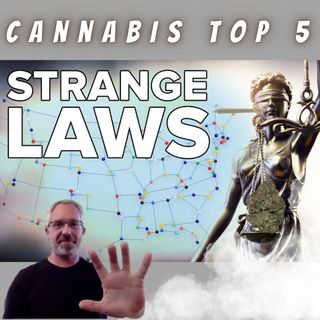 5 Odd Cannabis Laws And Regulations