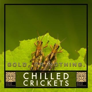 Chilled Crickets   White Noise   ASMR & Relaxation