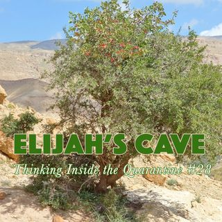 Elijah (2) at the cave (Thinking Inside the Quarantine #28)