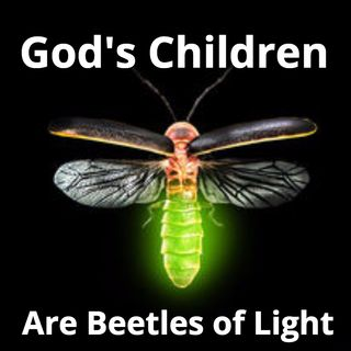 God's Children are Beetles of Light!!!