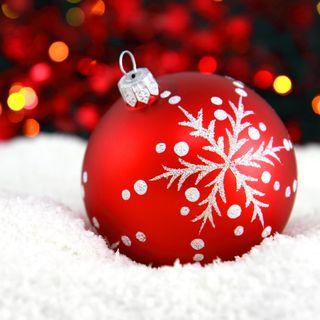 ¡Los festejos navideños ya comenzaron!