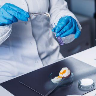 Cucina, medicina e tecnologia: cosa le tiene insieme?