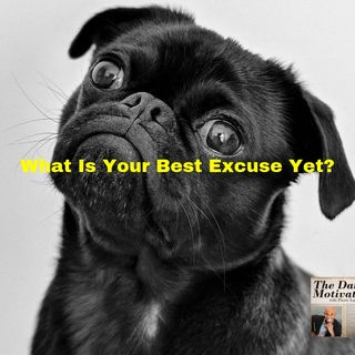 What Is Your Best Excuse Yet? Episode #375