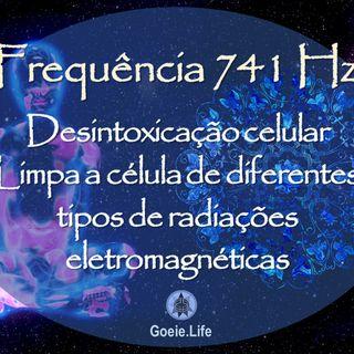 Good Wavy 🎧 741 hz - Desintoxicação das Células e resolução de problemas