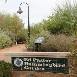 Yuma, Arizona's Wetlands and Gardens - Richard Stamp and Espey Matlock on Big Blend Radio