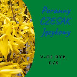 PCJ 2021-04-30 V-CE DYR. DS_YT
