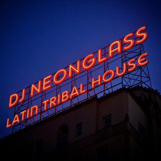 Dj Neonglass (NL) - LATIN HOUSE 46 Tracks YEARMIX  Vol 02