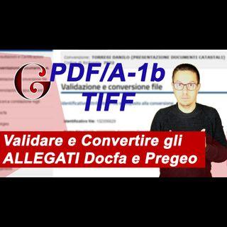 Come VALIDARE e CONVERTIRE gli ALLEGATI DOCFA e PREGEO (PDF/A o TIFF)  e 3 cose che NON devi fare
