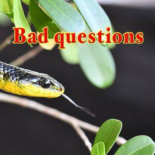 Bad Questions, Genesis 3:1-3