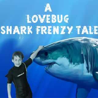 'A LoveBug Shark Frenzy Tale' Songfic