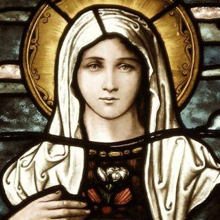 June 23 Rosary Live Stream 7:00 p.m.