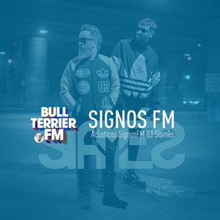 Acústicos SignosFM 03 Siamés