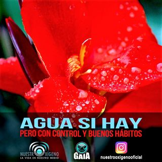 NUESTRO OXÍGENO  Agua si hay pero con control y buenos hábitos - Dr. Diego Costain Mazuera