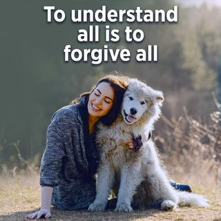#339 Happiness - To Understand All Is To Forgive All