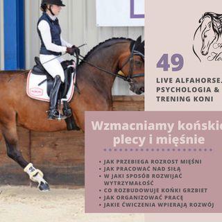Live 49: Wzmacniamy końskie mięśnie i plecy