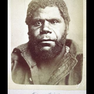 Tazmanian People of Australia