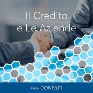 Il Credito e le Aziende - Intervista ad Alberto Federici  - 22/06/2021