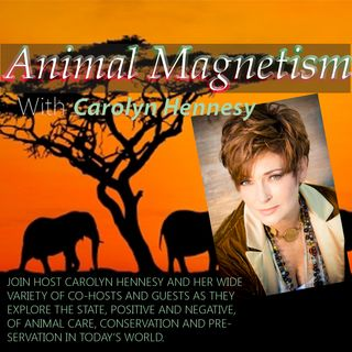 Animal Magnetism with Carolyn Hennesy