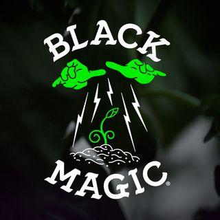 BLACK MAGIC- (PRE-REC)