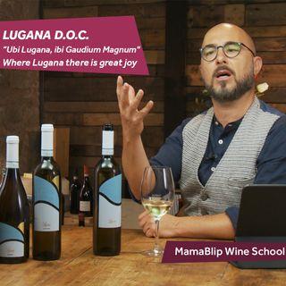 Turbiana   Lugana DOC   Wine tasting with Filippo Bartolotta