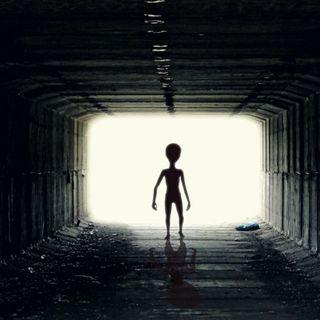 #rastignano Boriska, il ragazzo venuto da Marte