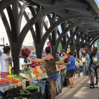 E15: Linda Vale | Cameron Park Farmers Market