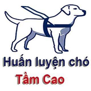 huanluyenchotamcao