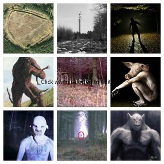 The Cryptid Enigma at Cannock Chase Part 1