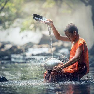 Meditazione sull'invidia