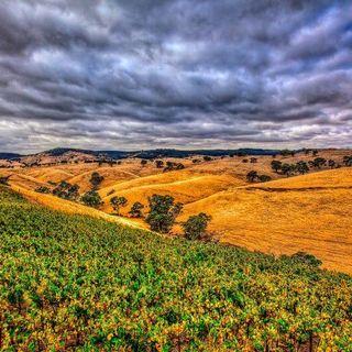 Ep 264: Barossa, Australia