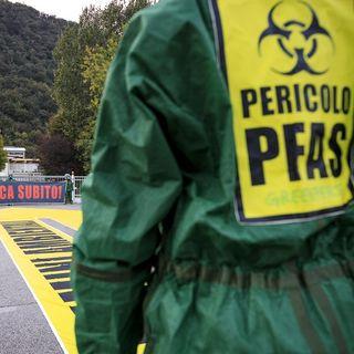 L'europarlamento sdogana le Pfas nell'acqua potabile