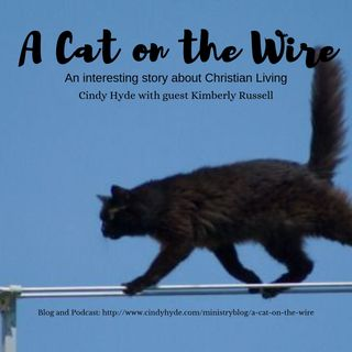 A Cat on the Wire