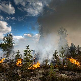 Ecco la strategia UE contro gli incendi