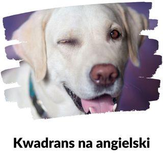 KNA: Lekcja 150 (pies)
