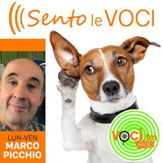 SENTO LE VOCI con Marco Picchio (Puntata 100 del 14-06-2021)