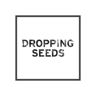 Journal for Dropping Seeds