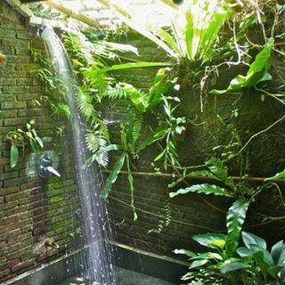 🦋 Shalom 🙏 Você já limpou suas emoções hoje? Então vem comigo tomar esse banho 🚿 de luz 💡 para energizar o seu corpo e a sua alma 🙌🙏🦋