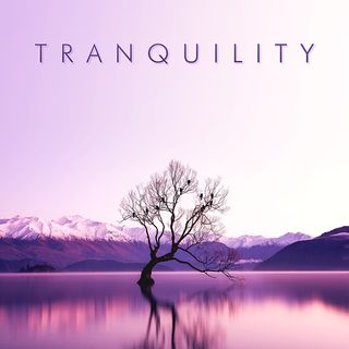 MK-Ultra - Tranquility