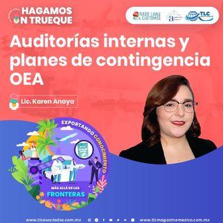 Episodio 227. Auditorías internas y planes de contingencia OEA
