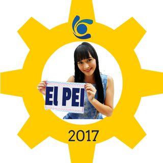El PEI 2017
