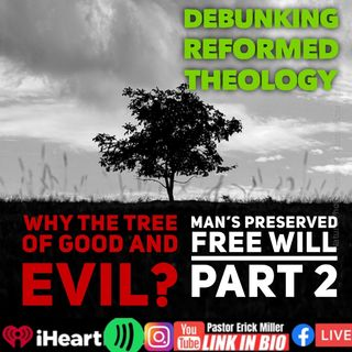 Ep 239 Why the Tree in the Garden Part 2