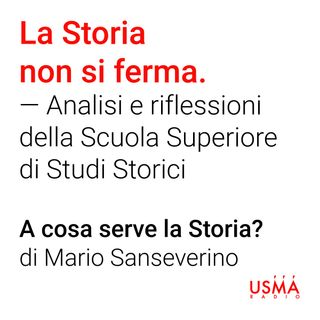 A cosa serve la Storia? - Mario Sanseverino