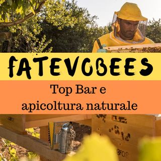 Inter-BEE-sta a Fatevobees: apicoltura naturale e top bar