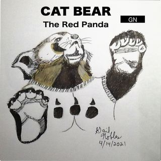 The Cat Bear and Monetizing - 4:14:21, 8.20 PM