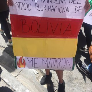 SOS Chiquitanía - Friday's for the future La Paz