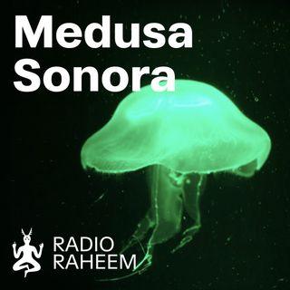 Medusa Sonora