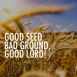 The Parables of Jesus Series: Good Seed, Bad Ground, Good Lord (Parable of the Sower) - Pr Andy Yeoh